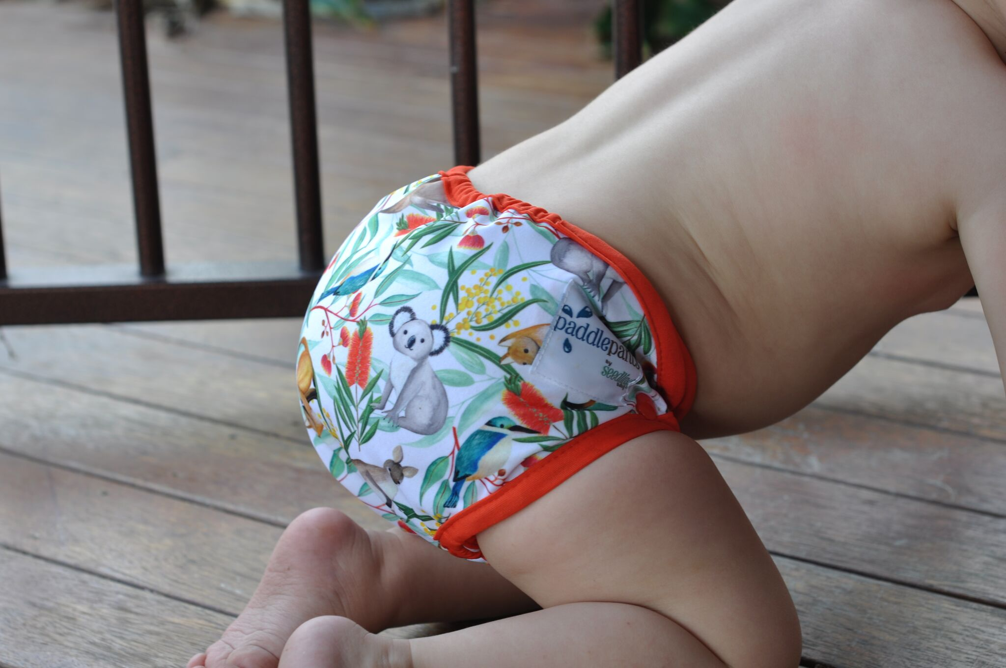 Baby Swimmers for Baby Swim